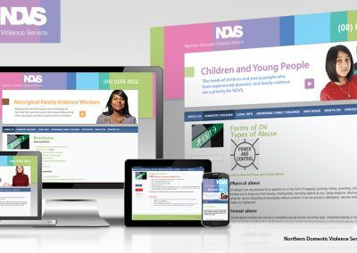 NDVS Online Business